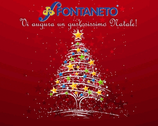 Merry Christmas from Fontaneto!